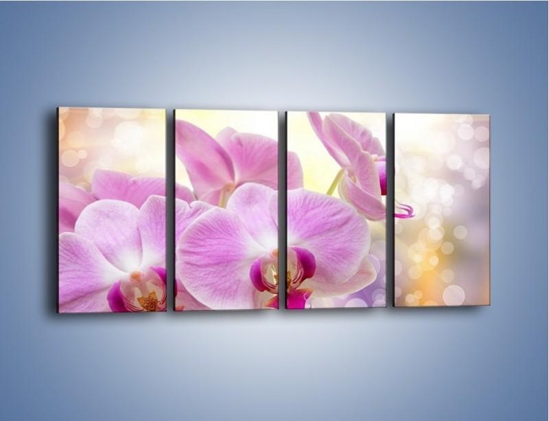 Obraz na płótnie – Lila kwiaty o poranku – czteroczęściowy K976W1