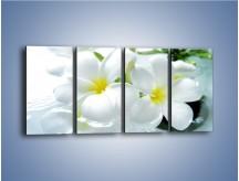 Obraz na płótnie – Białe kwiaty w potoku – czteroczęściowy K991W1