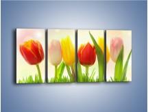 Obraz na płótnie – Sześć małych tulipanków – czteroczęściowy K996W1
