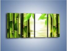 Obraz na płótnie – Bambusowe liście i łodygi – czteroczęściowy KN027W1
