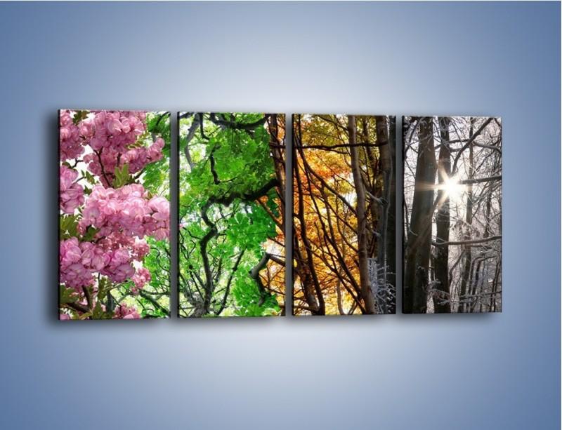 Obraz na płótnie – Drzewa w różnych kolorach – czteroczęściowy KN037W1
