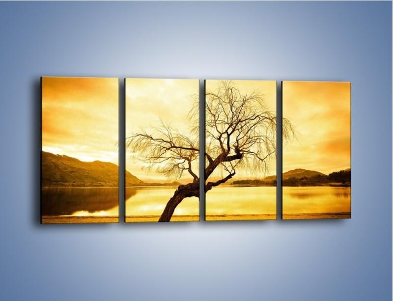 Obraz na płótnie – Pochylone drzewo w sepii – czteroczęściowy KN1033W1