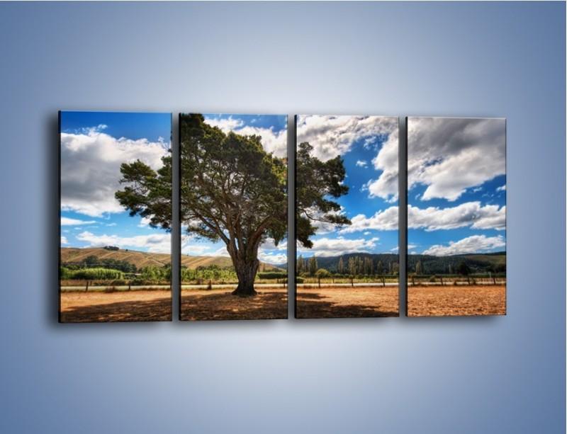 Obraz na płótnie – Cień pod rozłożystym drzewem – czteroczęściowy KN1037W1