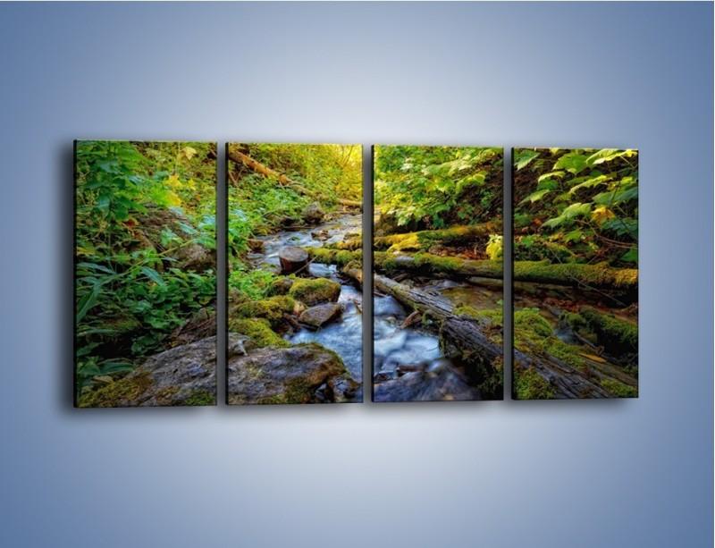 Obraz na płótnie – Drewno ścięte do wody – czteroczęściowy KN1059W1
