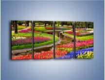 Obraz na płótnie – Aleje kolorowych tulipanów – czteroczęściowy KN1079W1
