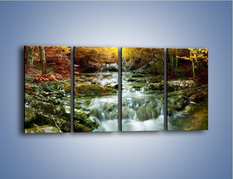Obraz na płótnie – Wilgoć w lesie – czteroczęściowy KN1118AW1