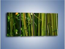Obraz na płótnie – Bambusowe łodygi z bliska – czteroczęściowy KN118W1
