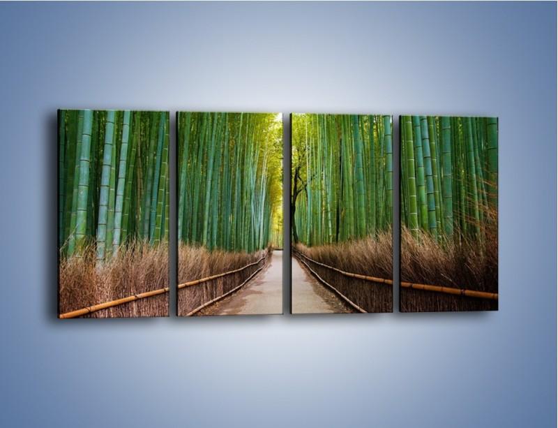 Obraz na płótnie – Bambusowy las – czteroczęściowy KN1187AW1