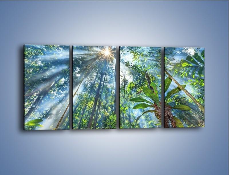 Obraz na płótnie – Dyzio marzyciel i drzewa – czteroczęściowy KN1189AW1