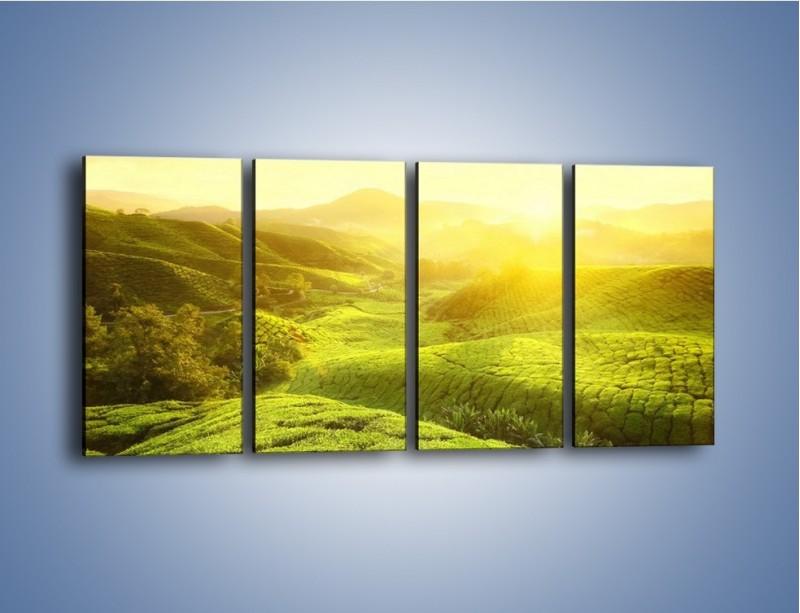 Obraz na płótnie – Zieleń w dolinie – czteroczęściowy KN1204AW1