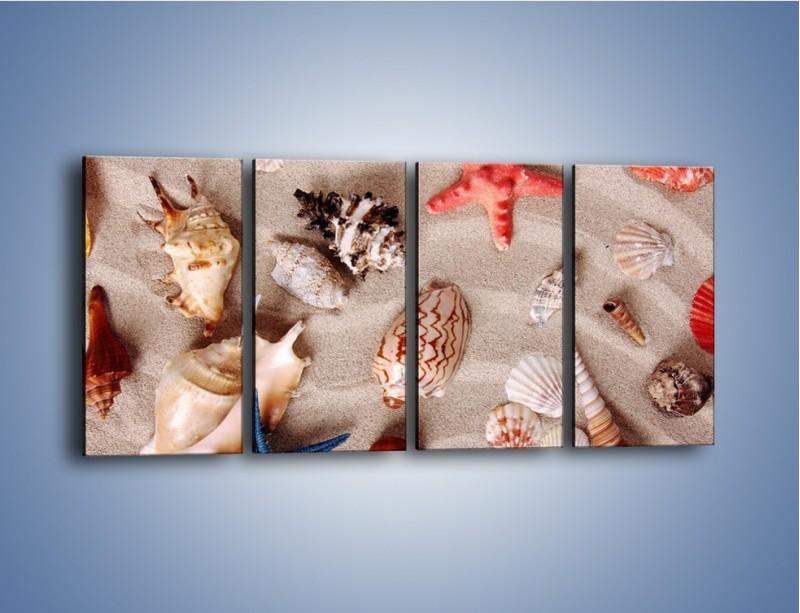 Obraz na płótnie – Kolorowe skorupiaki – czteroczęściowy KN1214AW1