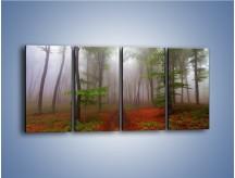 Obraz na płótnie – Budzący się lasek – czteroczęściowy KN1285AW1