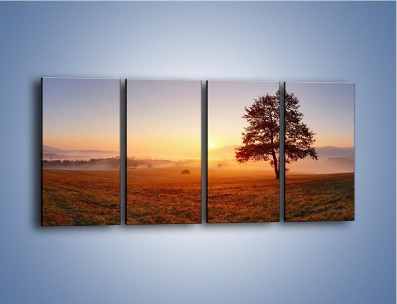 Obraz na płótnie – Krajobraz utopiony we mgle – czteroczęściowy KN1331AW1