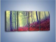 Obraz na płótnie – Bardzo wąską ścieżką leśną – czteroczęściowy KN1335AW1