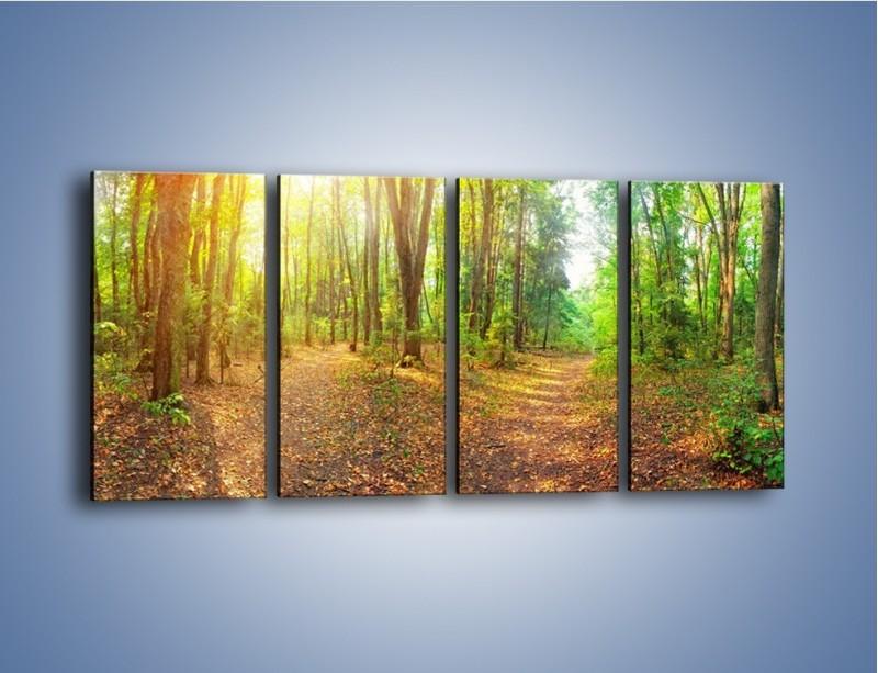 Obraz na płótnie – Przejrzysty piękny las – czteroczęściowy KN1344AW1
