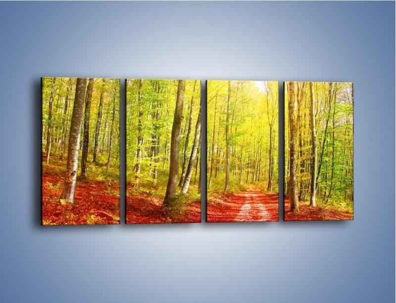 Obraz na płótnie – Brzózki liście i las – czteroczęściowy KN1345AW1