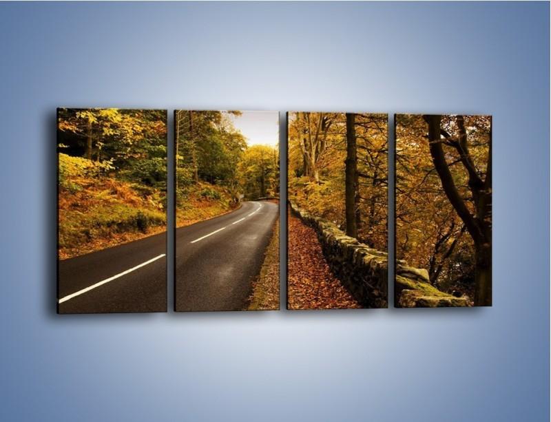 Obraz na płótnie – Asfaltową droga przez las – czteroczęściowy KN169W1
