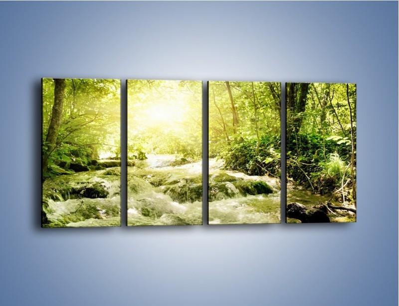 Obraz na płótnie – Wzburzony potok leśny – czteroczęściowy KN508W1