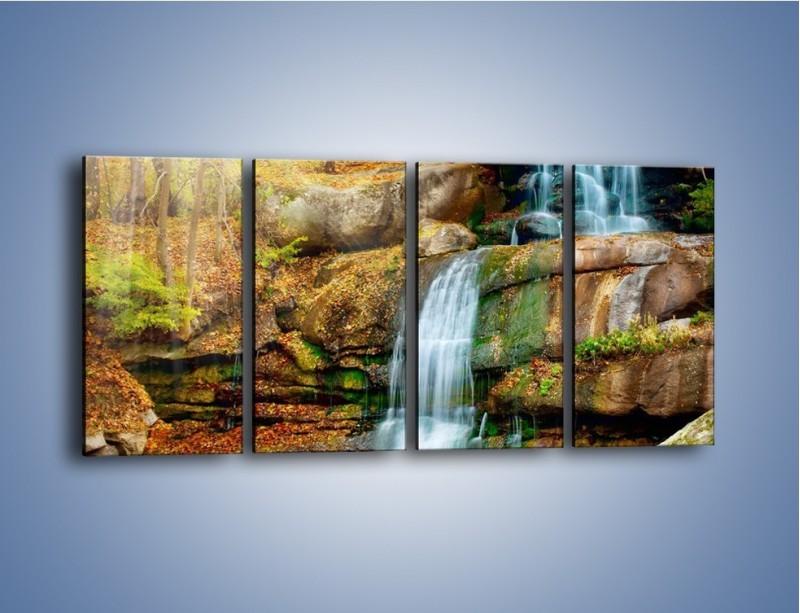 Obraz na płótnie – Leśne podłoże późną jesienią – czteroczęściowy KN563W1
