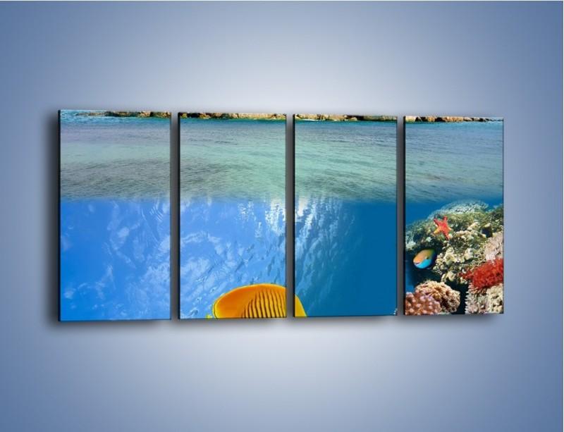Obraz na płótnie – Podwodny świat na wyspie – czteroczęściowy KN586W1