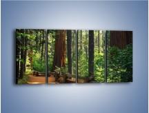 Obraz na płótnie – Chodźmy do lasu – czteroczęściowy KN611W1
