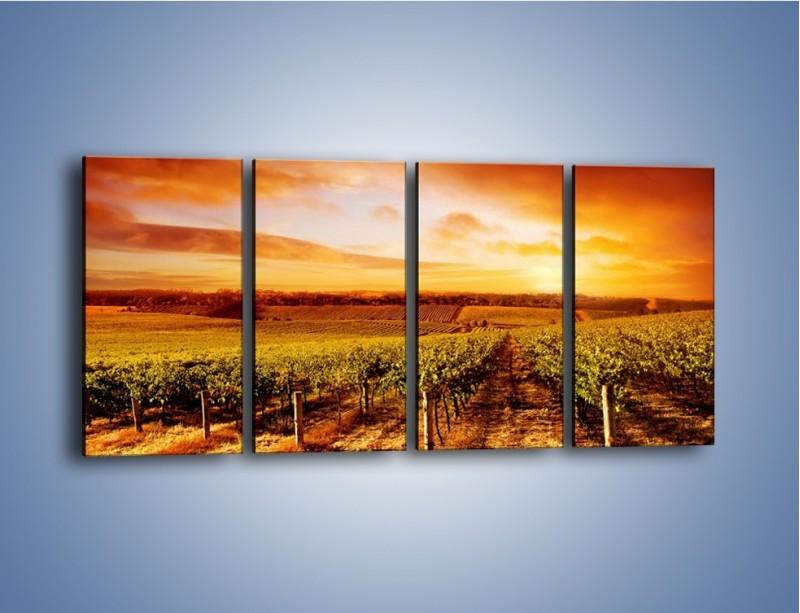 Obraz na płótnie – Ziemia i uprawy – czteroczęściowy KN673W1