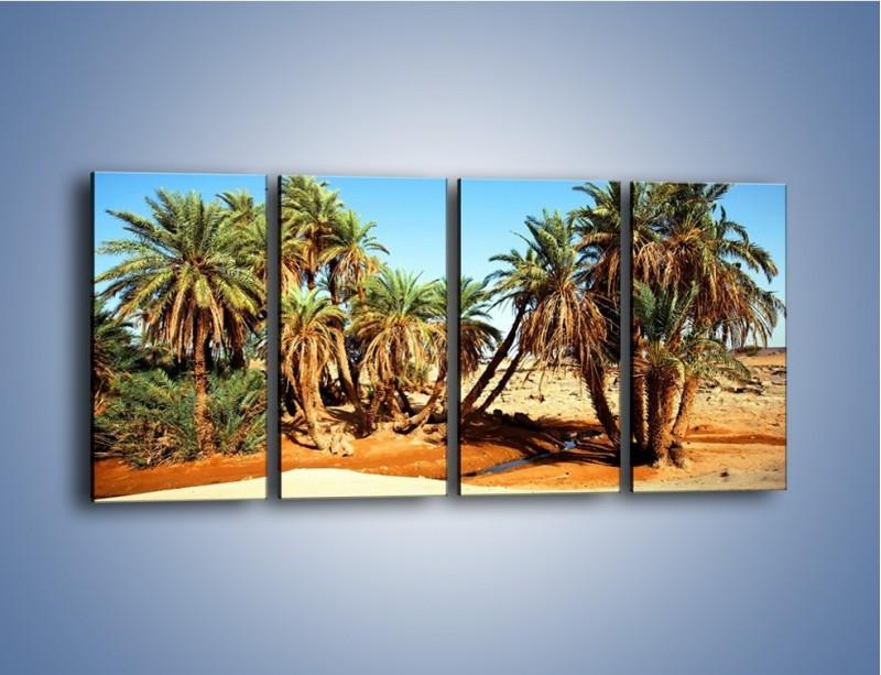 Obraz na płótnie – Palmowa rodzina w komplecie – czteroczęściowy KN809W1