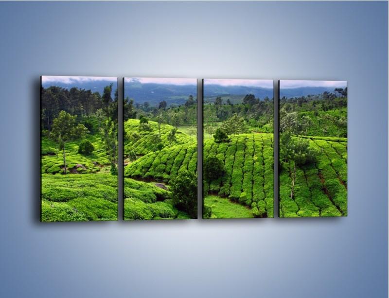 Obraz na płótnie – Rozległa zielona kraina – czteroczęściowy KN872W1