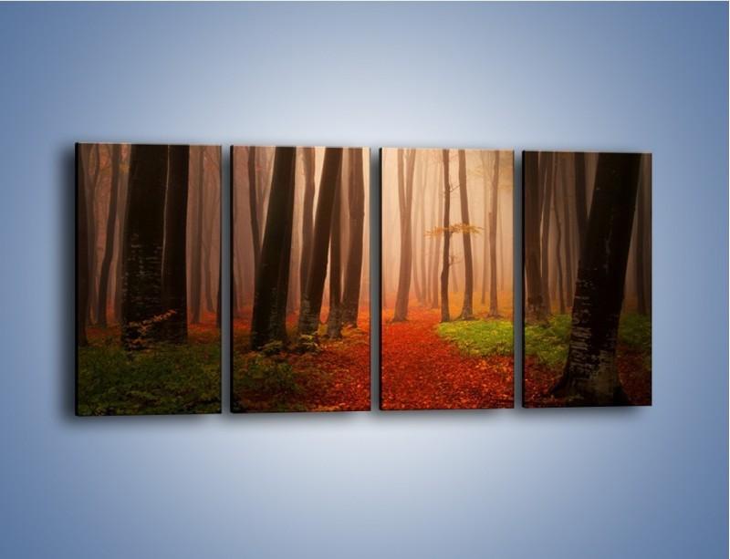 Obraz na płótnie – Las pełen tajemnic – czteroczęściowy KN909W1