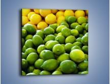 Obraz na płótnie – Cytrynowo-limonkowy duet – jednoczęściowy kwadratowy JN190