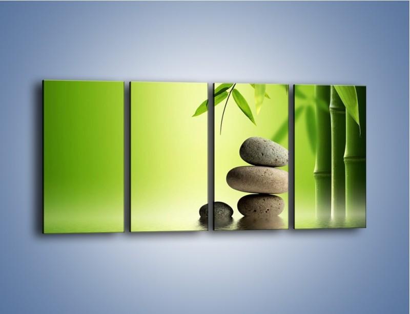 Obraz na płótnie – Kamień i roślinka – czteroczęściowy KN954W1