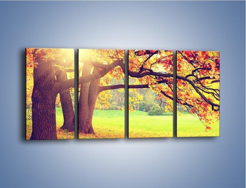 Obraz na płótnie – Jesienią w parku też jest pięknie – czteroczęściowy KN967W1
