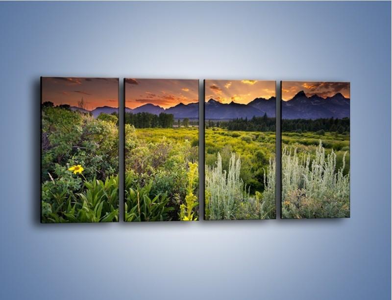 Obraz na płótnie – Wieczorny spokój na polanie – czteroczęściowy KN987W1