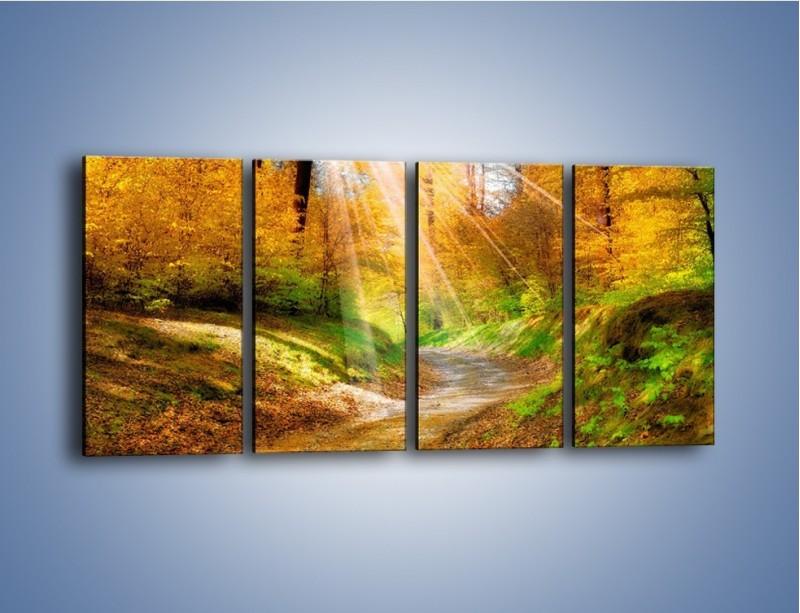 Obraz na płótnie – Promienną i słoneczną ścieżką przez las – czteroczęściowy KN989W1