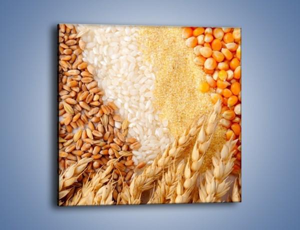 Obraz na płótnie – Ziarna pszenno-zbożowe – jednoczęściowy kwadratowy JN207