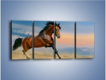 Obraz na płótnie – Brązowy koń na pustyni – czteroczęściowy Z011W1