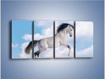 Obraz na płótnie – Białe obłoki i koń – czteroczęściowy Z019W1