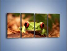 Obraz na płótnie – Bystre oczka małej żabki – czteroczęściowy Z023W1