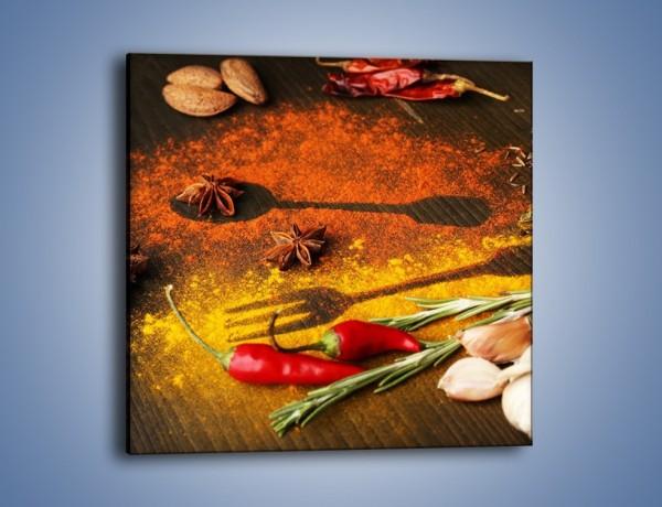 Obraz na płótnie – Przyprawy z warzywami – jednoczęściowy kwadratowy JN213