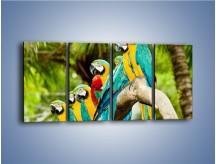 Obraz na płótnie – Kolorowe papugi w szeregu – czteroczęściowy Z029W1