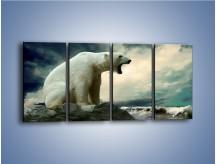 Obraz na płótnie – Donośny krzyk polarnego niedźwiedzia – czteroczęściowy Z114W1