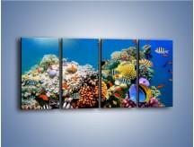 Obraz na płótnie – Fauna i kolorowi towarzysze – czteroczęściowy Z116W1
