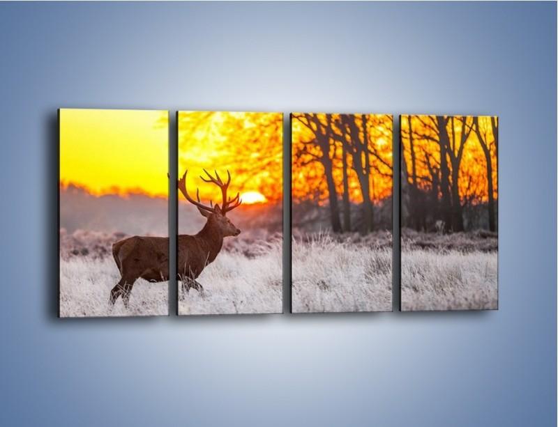 Obraz na płótnie – Jeleń o zachodzie słońca – czteroczęściowy Z164W1