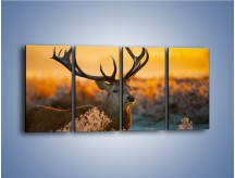 Obraz na płótnie – Ciężkie poroże jelenia – czteroczęściowy Z165W1