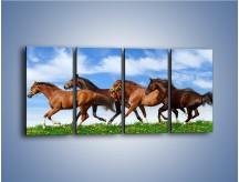 Obraz na płótnie – Galopujące stado brązowych koni – czteroczęściowy Z172W1