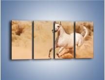 Obraz na płótnie – Klacz w tumanach piasku – czteroczęściowy Z233W1
