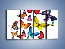 Obraz na płótnie – Kolorowo wśród motyli – czteroczęściowy Z236W1