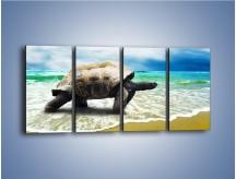 Obraz na płótnie – Jak tu nie kochać żółwi – czteroczęściowy Z251W1