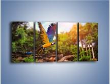 Obraz na płótnie – Kolorowa papuga w locie – czteroczęściowy Z280W1