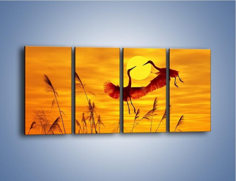 Obraz na płótnie – Czaple i zachód słońca – czteroczęściowy Z302W1